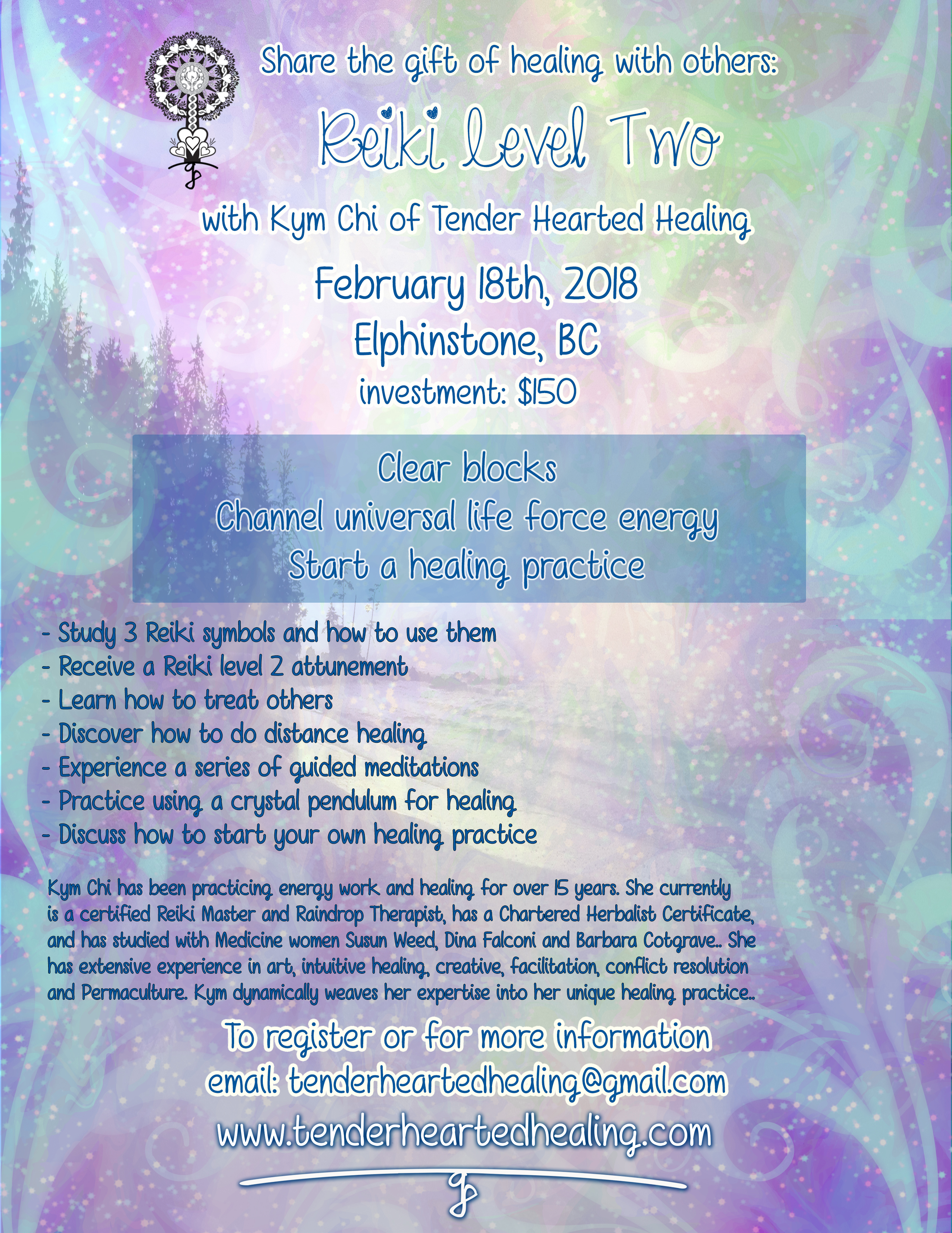 Reiki level 2 join tender hearted healing in sharing the gift of healing with others reiki level 2 biocorpaavc